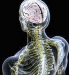 fisioterapia_neurologica_2